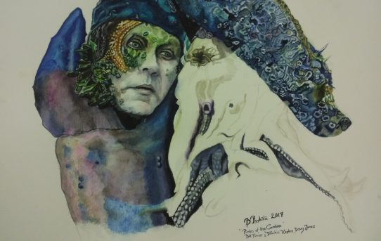 Konstutställning av Birgitta Pyykölä